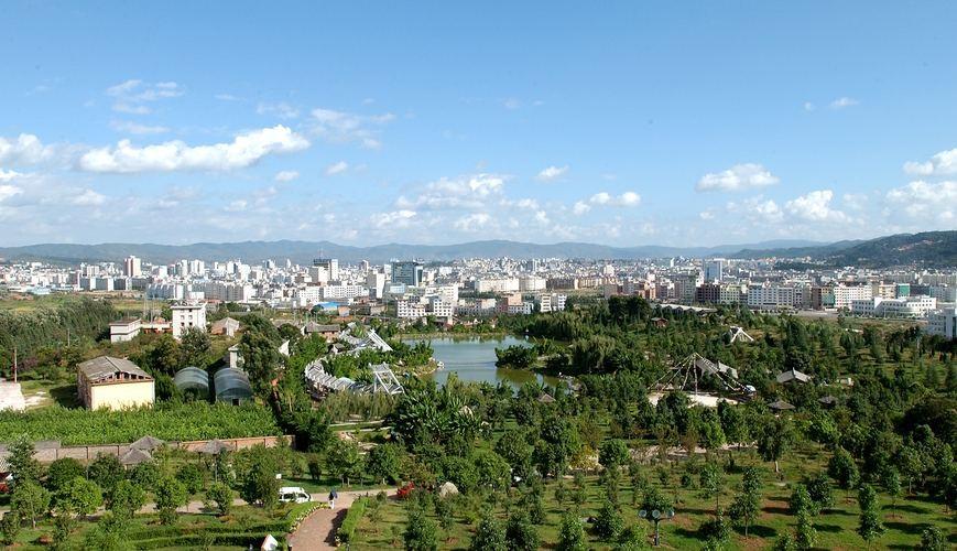 楚雄市建设国家森林城市规划通过评审