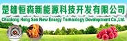 楚雄恒森新能源科技开发有限公司